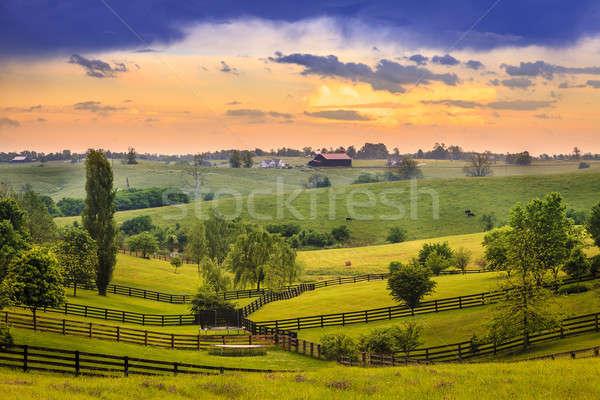 Landelijk Kentucky mooie avond scène gras Stockfoto © alexeys