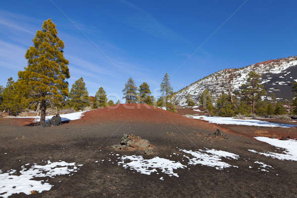 Pôr do sol cratera pinho árvores crescente lava Foto stock © alexeys