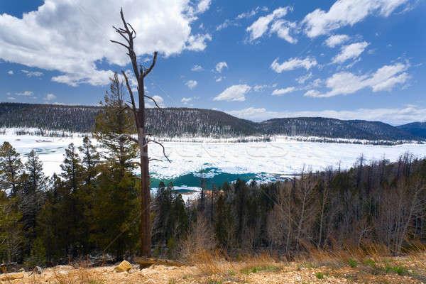 Navajo Lake Stock photo © alexeys
