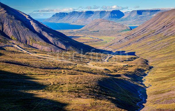 Icelandic fjords Stock photo © alexeys