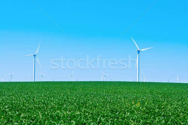 Zdjęcia stock: Farma · wiatrowa · gospodarstwa · niebieski · zielone · moc
