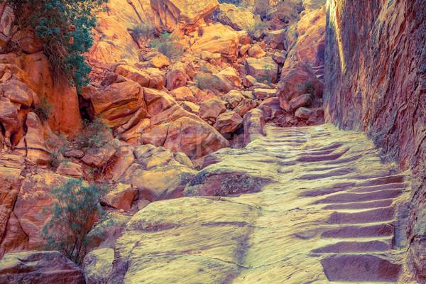 походов тропе шаги каменные природы пустыне Сток-фото © alexeys
