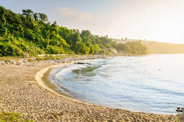 Empty beach in early morning Stock photo © alexeys