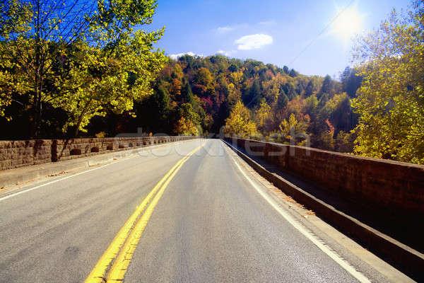 Road through Appalachians Stock photo © alexeys