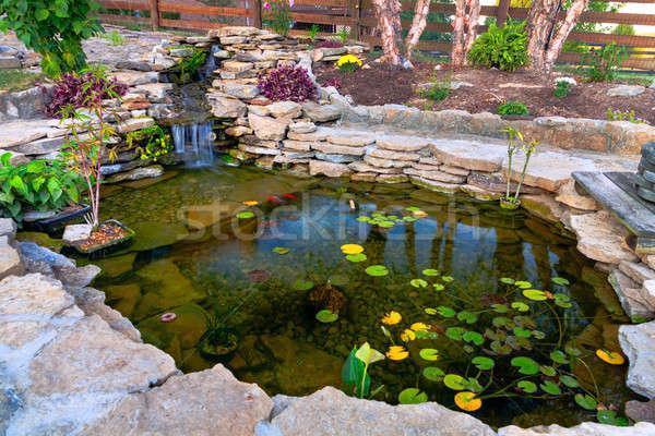 Staw dekoracyjny koi ogród kwiaty lata Zdjęcia stock © alexeys