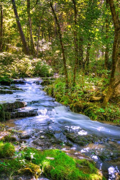 Erdő patak festői kilátás kellemes domb Stock fotó © alexeys