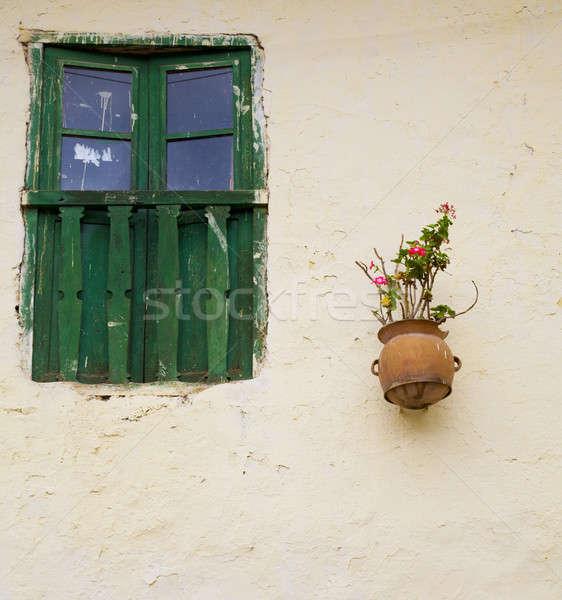 Window and flowers Stock photo © alexeys