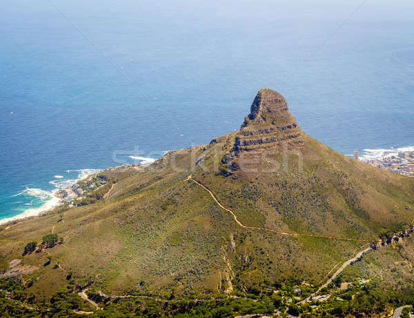 Lion's Head Mountain in Cape Town Stock photo © alexeys