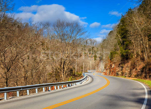 Winding road in Kentucky Stock photo © alexeys