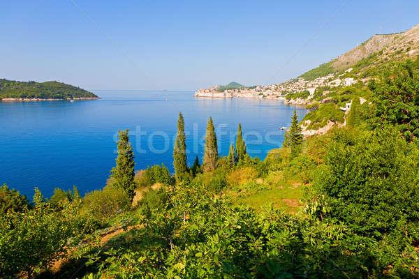 Croatian coast Stock photo © alexeys