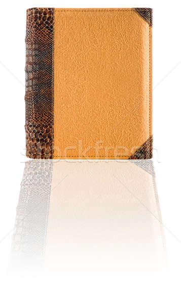 Book cover Stock photo © alexeys