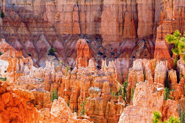 Bryce Canyon Stock photo © alexeys