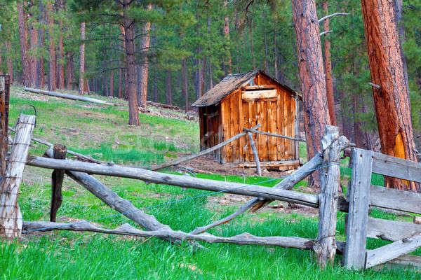 Wooden Hut Stock photo © alexeys