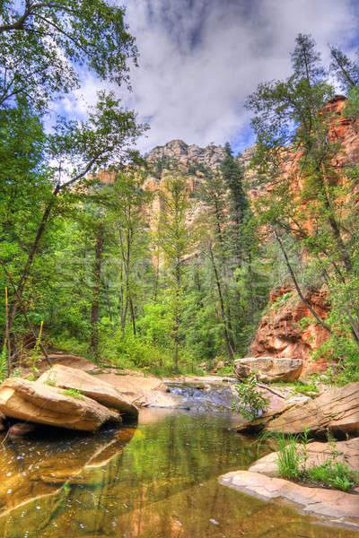 Mountain creek Stock photo © alexeys