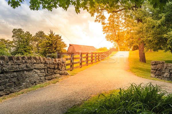 Kraju aleja sceniczny Kentucky lata Zdjęcia stock © alexeys