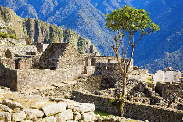 Huizen Machu Picchu ruines steen Peru reizen Stockfoto © alexeys