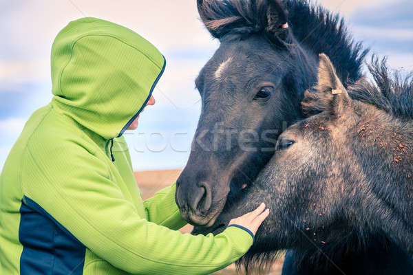 Woman with Icelandic Ponies Stock photo © alexeys