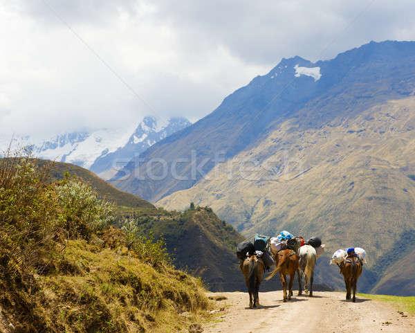 Estrada camping engrenagem montanhas Machu Picchu nuvens Foto stock © alexeys