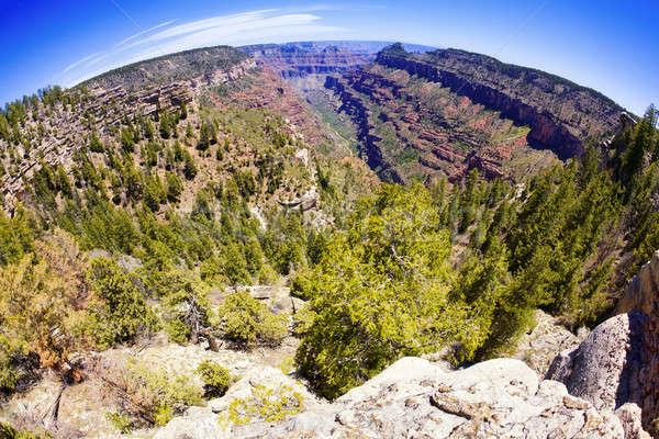 Grand Canyon olho de peixe ver lado desfiladeiro parque Foto stock © alexeys