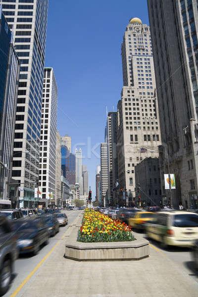 Michigan belváros Chicago égbolt virágok út Stock fotó © alexeys