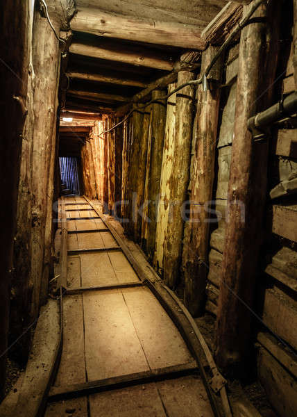 Tunnel of life Stock photo © alexeys