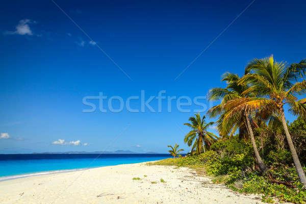 тропический пляж острове пусто идиллический пляж небольшой Сток-фото © alexeys