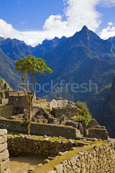 Evler Machu Picchu ören taş Peru seyahat Stok fotoğraf © alexeys