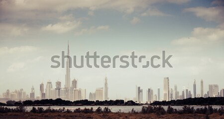 Ras al Khor Wildlife Sanctuary Stock photo © alexeys
