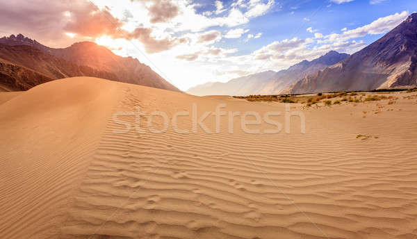 Nubra Valley sand dunes Stock photo © alexeys