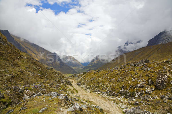 Trail in the Andes Stock photo © alexeys