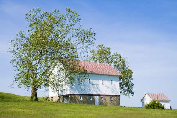 Two barns Stock photo © alexeys