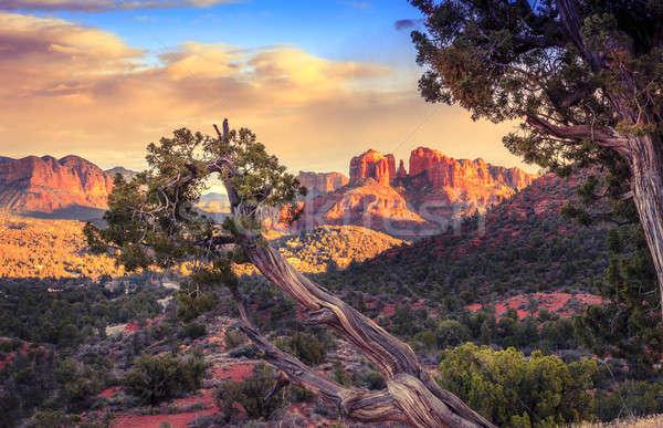 Stockfoto: Zonsondergang · kathedraal · rock · schilderachtig · afbeelding · Arizona