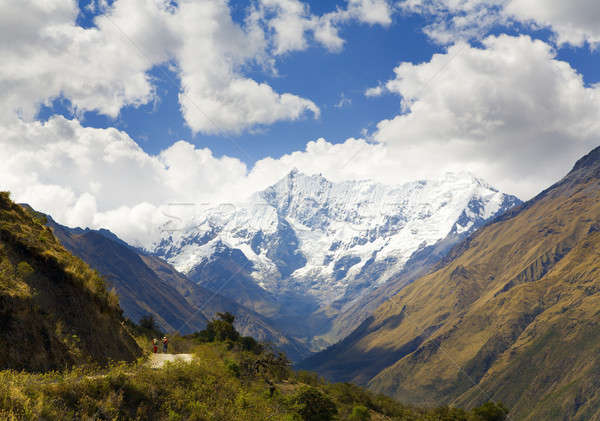 In the Andes Stock photo © alexeys