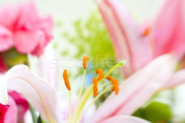 Buquê imagem flores foco verde Foto stock © alexeys