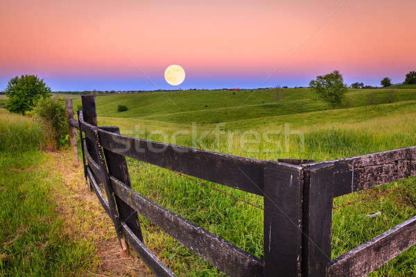Moonrise Stock photo © alexeys