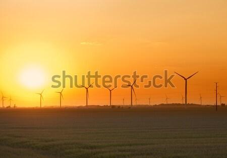 Szélfarm naplemente kilátás Indiana nap tájkép Stock fotó © alexeys