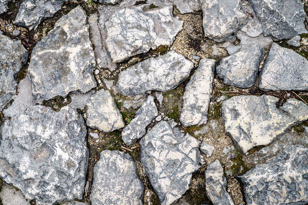 Cobblestone background Stock photo © alexeys