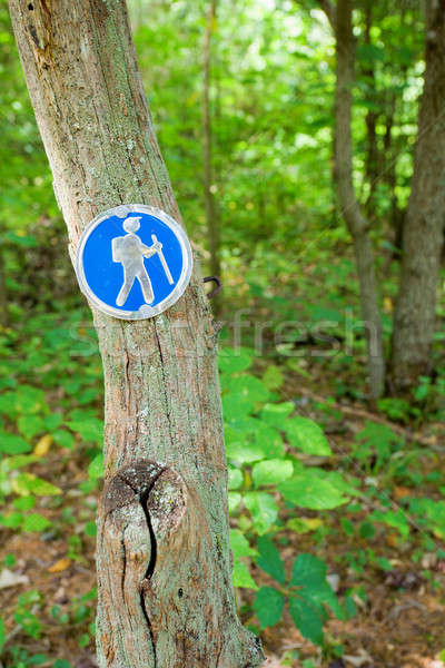 Hiking trail Stock photo © alexeys