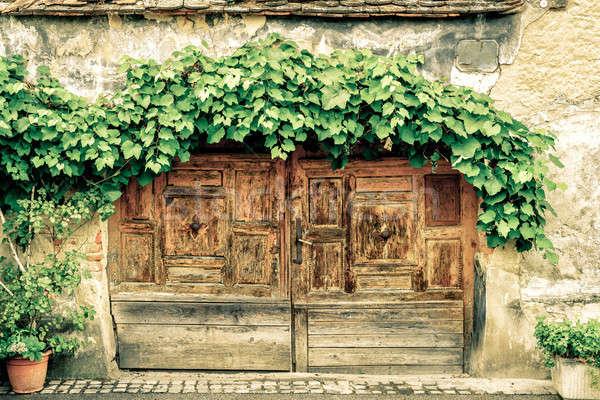 Puerta de uva vid edad Zagreb Foto stock © alexeys