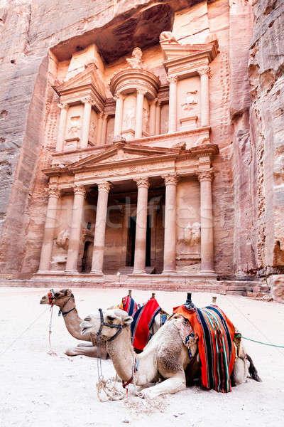 Camels of Petra Stock photo © alexeys