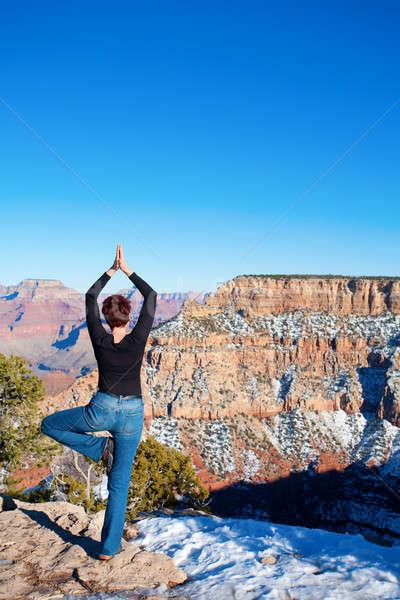 蓮 グランドキャニオン 女性 位置 背景 空 ストックフォト © alexeys