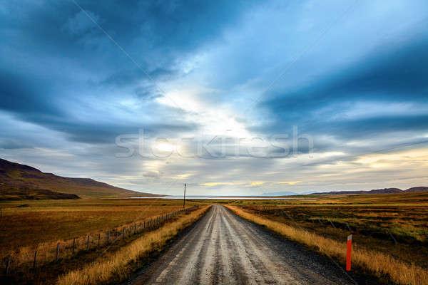 Lonely road Stock photo © alexeys