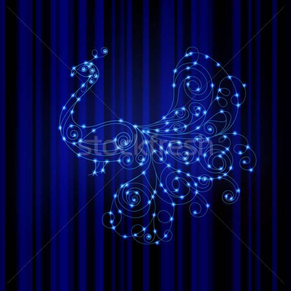 Vektör parlak tavuskuşu enerji örnek çizgili Stok fotoğraf © alexmakarova