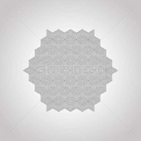 Vettore geometrica logo libro moda segno Foto d'archivio © alexmakarova