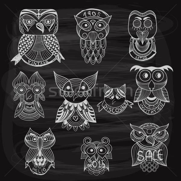10 chalk drawn owls on blackboard Stock photo © alexmakarova
