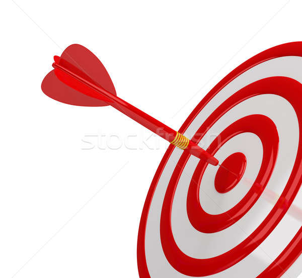 Success target Stock photo © AlexMas