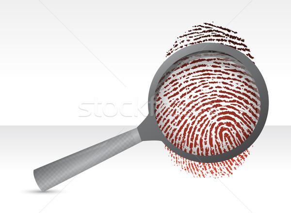 Detectives magnifier with fingerprint illustration design over w Stock photo © alexmillos