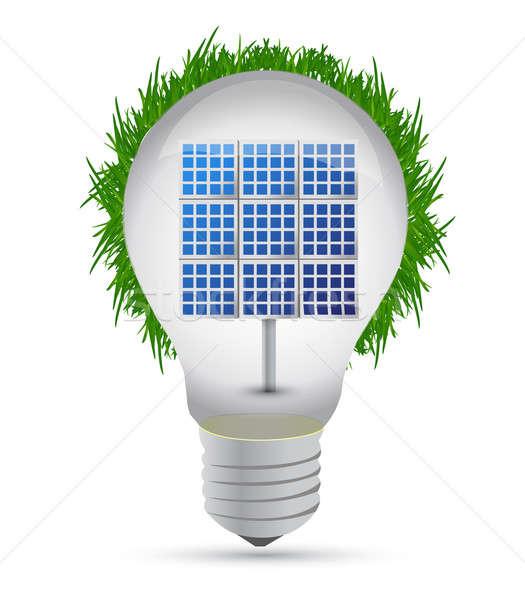 eco lightbulb and solar panel illustration design Stock photo © alexmillos