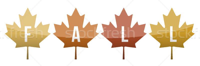 ősz levelek illusztráció terv természet háttér Stock fotó © alexmillos
