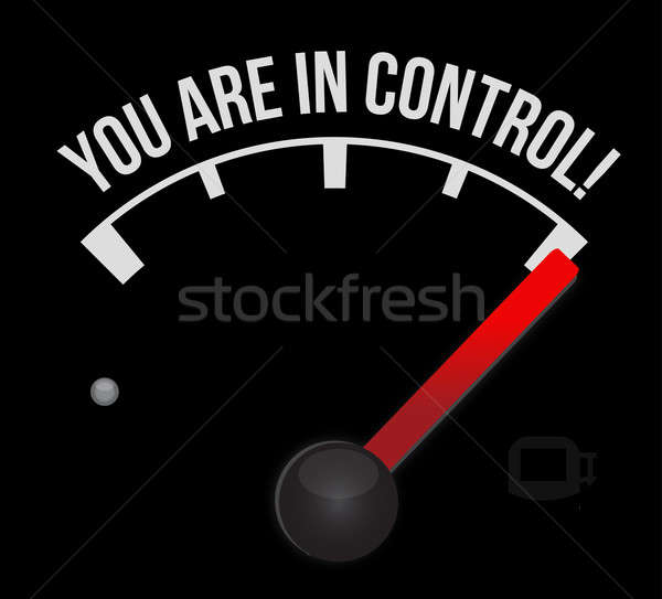 Speedometer with the words You're in Control  Stock photo © alexmillos